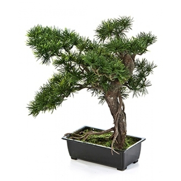 Kunstplant Bonsai pinus 38 cm
