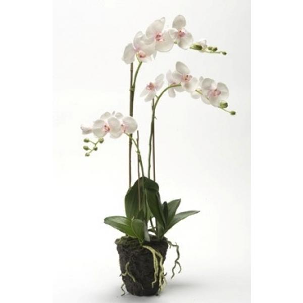 Kunstplant Phalaenopsis pink soiled