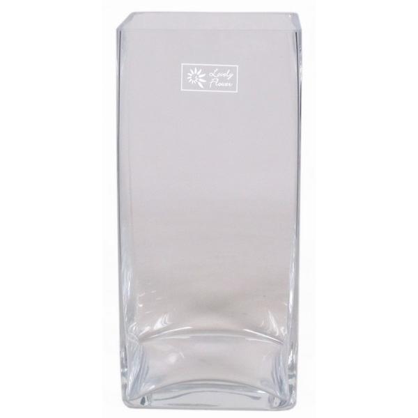 Accuvaas glas langwerpig breed 30 cm hoog heavy glas