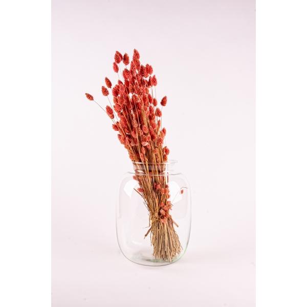Jar vaas glas 32 cm hoog